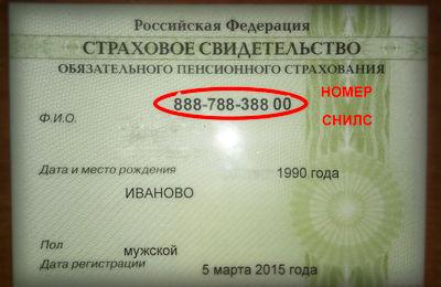 Как узнать свой номер пенсионного страхового свидетельства (СНИЛС) онлайн, по паспорту, по ИНН
